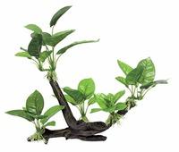 Искусственное растение ArtUniq Ветвистая коряга с анубиасом 32×15,5×27,5 см