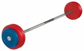 Набор спортивных штанг MB Barbell неразборная MB-BarMW-C 30 кг