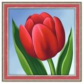 Алмазная живопись Набор алмазной вышивки Красный тюльпан (АЖ-1634) 15х15 см