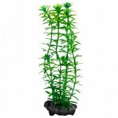 Искусственное растение Tetra Anacharis S