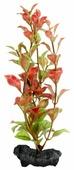 Искусственное растение Tetra Red Ludwigia S