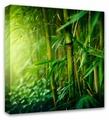 Картина Симфония Бамбук