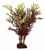 Искусственное растение ArtUniq Хоттония коричнево-желтая 10 см, набор 6 шт.