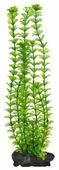 Искусственное растение Tetra Ambulia L