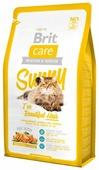 Корм для кошек Brit Care Sunny для здоровья кожи и шерсти, с лососем