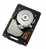 Жесткий диск Lenovo 42D0637