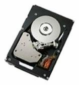 Жесткий диск IBM 49Y6092