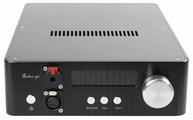 ЦАП Audio-GD NFB-10.33
