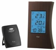 Термометр Ea2 ED601
