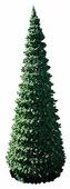 Green Trees Сосна Евро-2