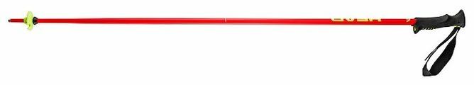 Палки для горных лыж HEAD Classic Neon 2015-2016