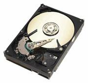Жесткий диск Seagate ST3160815A