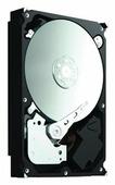 Жесткий диск Seagate ST3500412AS