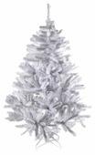 Triumph Tree Ель Исландская белоснежная--