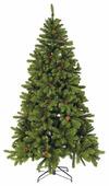 Triumph Tree Ель Императрица с шишками
