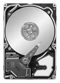 Жесткий диск Seagate ST9300603SS