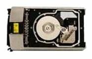 Жесткий диск HP 404713-001