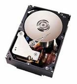 Жесткий диск Lenovo 90P1319