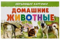 Набор карточек Литур Домашние животные 20x13 см 16 шт.