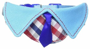 Ошейник Japan Premium Pet С галстуком