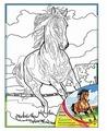 "Рыжий кот Картина по контурам ""Лошадь"" 30х40 см (Х-9843)"