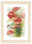 Lanarte Набор для вышивания Маки 20 x 34 см (0156301-PN)