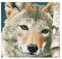 Lanarte Набор для вышивания Волк 35 х 35 см (0166758-PN)