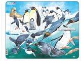 Рамка-вкладыш Larsen Пингвины (FH7), 50 дет.