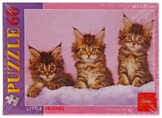 Пазл Hatber Little Friends Котята (60ПЗ5_10981), 60 дет.
