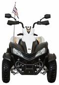 Dongma Квадроцикл ATV DMD-268A