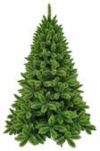 Triumph Tree Ель Триумф Норд зеленая