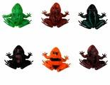 Фигурки 1 TOY В мире животных Лягушки Т50503