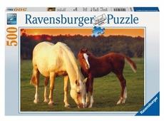 Пазл Ravensburger Красивые лошади 4 в 1 (14347), 500 дет.