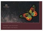 Планшет для пастели Лилия Холдинг Палаццо Бабочка 42 х 29.7 см (A3), 200 г/м², 20 л.