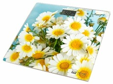 Весы Home Element HE-SC906 Camomile Field