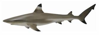 Фигурка Collecta Рифовая акула 88726