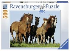 Пазл Ravensburger Табун лошадей (14717), 500 дет.