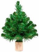 Triumph Tree Ель Норвежская--