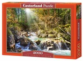 Пазл Castorland The forest stream (C-200382), 2000 дет.