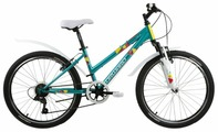 Подростковый горный (MTB) велосипед FORWARD Iris 24 1.0 (2018)