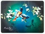 Коврик Dialog PM-H17 Bird