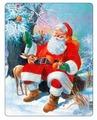 Рамка-вкладыш Larsen Санта с животными (JUL7), 32 дет.