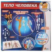 Набор Играем вместе Тело человека (KY-10002)