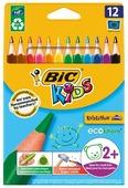 BIC Цветные карандаши Evolution Triangle 12 цветов (8297356)