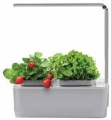 Набор для выращивания Назад К Истокам Смарт-сад с подсветкой iGarden LED