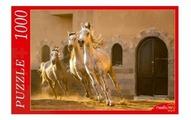 Пазл Рыжий кот Резвые кони (КБ1000-6920), 1000 дет.