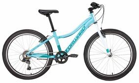 Подростковый горный (MTB) велосипед FORWARD Seido 24 1.0 (2019)