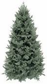 Triumph Tree Ель Царская