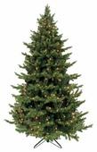 Triumph Tree Ель Шервуд Премиум зеленая (лампы) 4.25