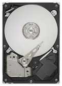 Жесткий диск Seagate ST3500418AS